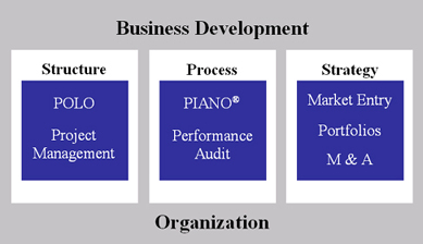 Organizational Development Consulting